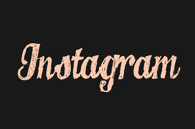 No-nonsense Guide to Surely Increasing Free Instagram Followers